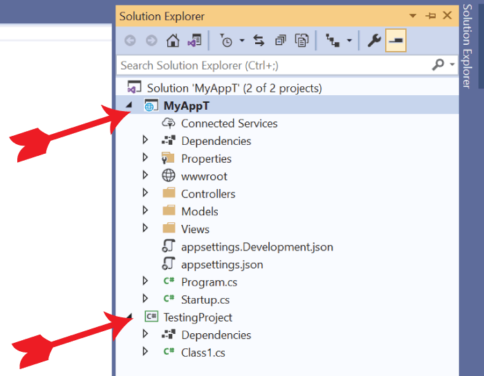 2 Projects in Solution Explorer